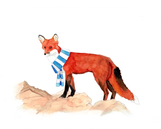 red-fox-with-a-scarf-prints.jpg