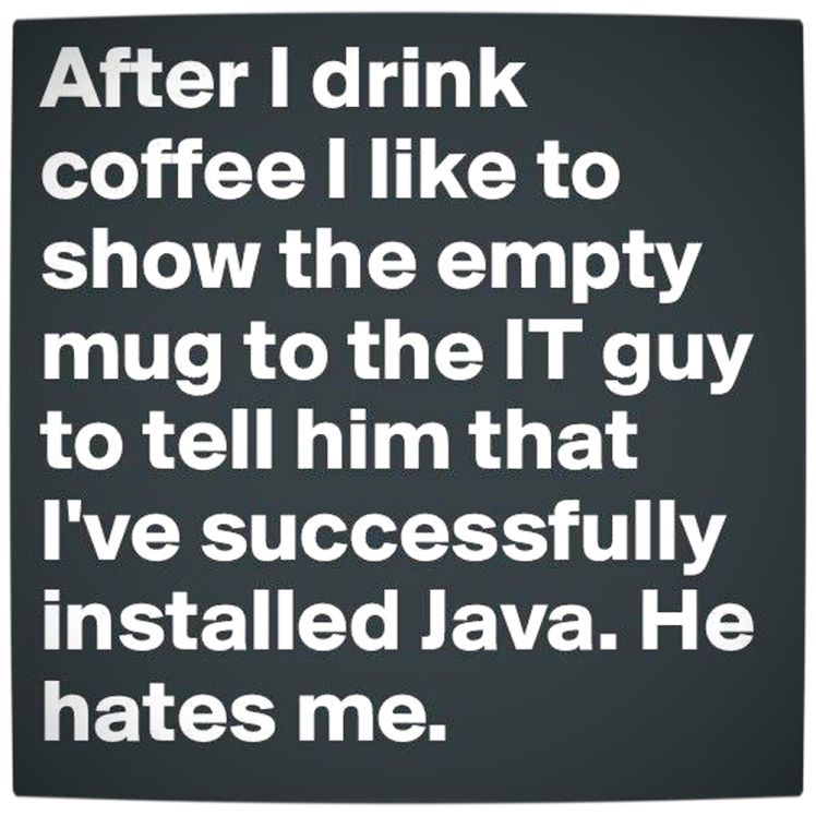 Vamers-Humour-Successfully-Installed-Java-Main